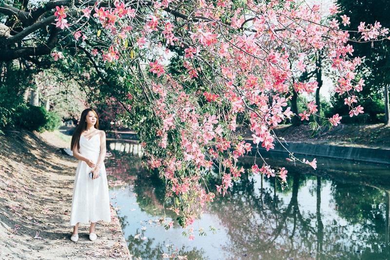 Tianwei girl016 田尾小葉欖仁森林